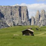 Italy, South Tyrol, 2013-95